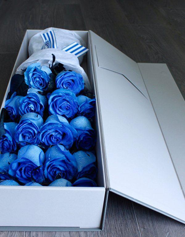 bluerose_1