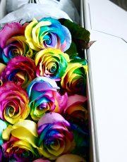 rainbow_1